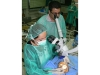 temporal-bone-course-ns-30